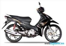 So sánh xe máy Suzuki Revo và Suzuki Axelo