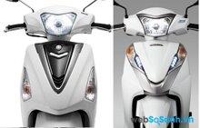 So sánh xe máy Yamaha Acruzo và Honda Lead