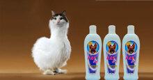 Sữa tắm cho mèo Fay 5 sao có tốt không?