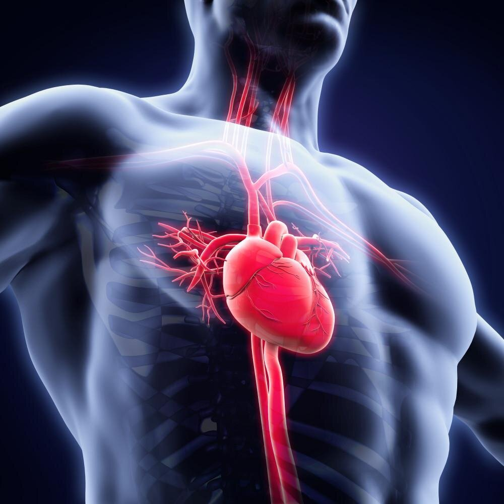 Người mắc bệnh tim mạch cẩn thận với các thực phẩm giàu đường