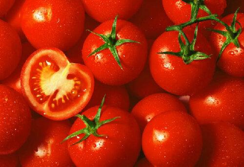 Tại sao nước ép cà chua giúp giảm cân hiệu quả?