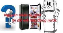 Tại sao tủ lạnh bị ra mồ hôi ? Hướng dẫn chi tiết cách khắc phục tình trạng này cho bạn hết băn khoăn lo nghĩ