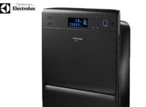 Tận hưởng không khí trong lành với máy lọc không khí Electrolux Z531