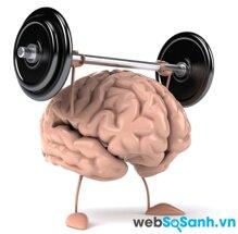 Tăng khả năng ghi nhớ và sức mạnh của bộ não nhờ các thảo mộc tự nhiên