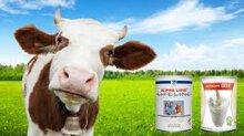 Thị trường thực phẩm sữa non: Đâu là sữa tốt cho sức khỏe?