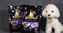 Thức ăn cho chó Ganador có tốt không?