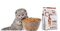 Thức ăn cho mèo Catsrang dùng có tốt không?
