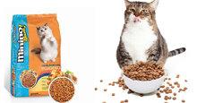 Thức ăn cho mèo Minino Yum có ưu điểm gì nổi bật?