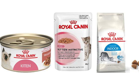 Thức ăn cho mèo Royal Canin có những loại nào?