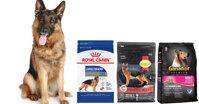 Thức ăn khô tốt nhất cho giống chó lớn becgie đức