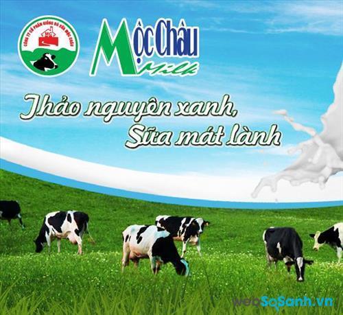Giá sữa tươi, sữa chua Mộc Châu