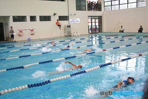 Tổng hợp giá vé bể bơi tại các quận: Cầu Giấy, Hoàng Mai