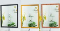 Top 10 thương hiệu gương soi nhà tắm bán chạy nhất tại TP.HCM