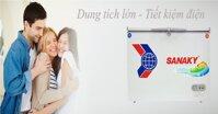 Top 3 tủ đông Sanaky 2 cửa giá rẻ phù hợp với hộ gia đình kinh doanh