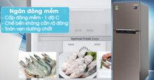 TOP 3 tủ lạnh Samsung có ngăn đông mềm dưới 6 triệu tốt nhất hiện nay