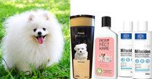 Top 5 sữa tắm cho chó Phốc Sóc được ưa chuộng nhất