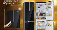 Tủ lạnh ngăn đá dưới có mấy loại ? Những hãng nào có tủ lạnh ngăn đá dưới ?