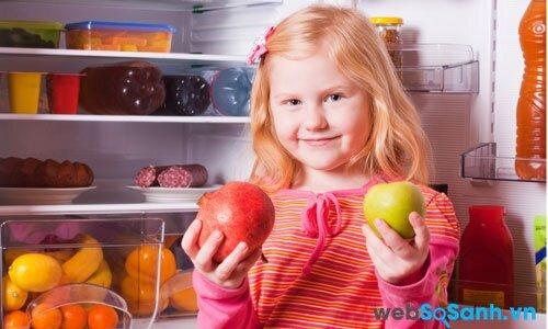 Tủ lạnh Panasonic NR-BU344L giá rẻ, dung tích lớn