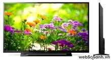 TV 40 inch Sony 40R350B: tối ưu hình ảnh và âm thanh, giá dễ chịu