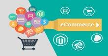 Uy tín thương hiệu, chất lượng sản phẩm, giá cả cạnh tranh hay sự hài lòng về dịch vụ làm nên thành công của một Trang thương mại điện tử?