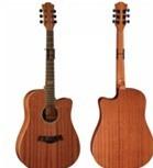 Đàn Guitar Adonis Acoustic AD-603C