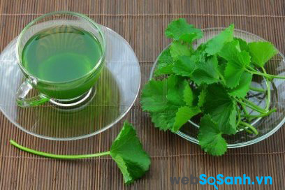 Rau má là thức thuốc rất tốt cho người bị say nắng