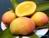 Những loại rau quả chống lại được sự ô nhiễm thuốc trừ sâu
