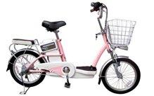 Xe đạp điện: Chọn pin hay ắc quy?