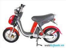 Xe đạp điện Nijia giá bao nhiêu tiền?