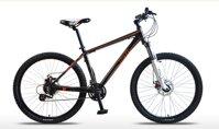 Xe đạp leo núi Jett giá bao nhiêu tiền tháng 8/2017