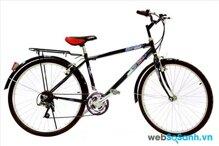 Xe đạp thể thao Thống Nhất giá bao nhiêu tiền?