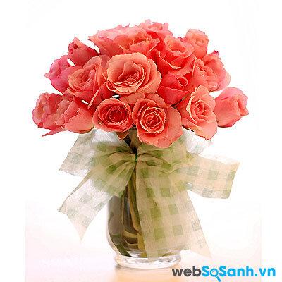 Ý nghĩa của các loài hoa hồng và những cách cắm hoa hồng đơn giản ai cũng làm được