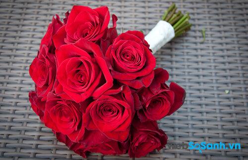 Ý nghĩa của những bông hoa hồng dành tặng nửa yêu thương