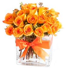 Ý nghĩa màu sắc các loại hoa hồng
