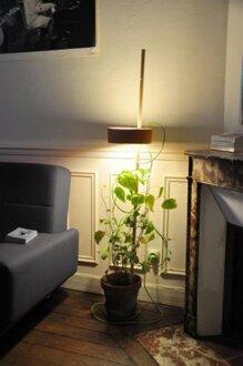 Ý tưởng lạ với đèn và chậu cây