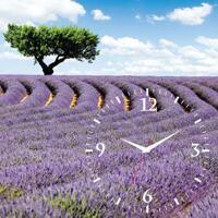 Đồng hồ tranh cánh đồng hoa oải hương Dyvina 1T3030-9