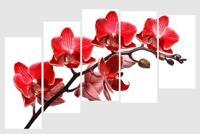 Tranh nghệ thuật cành đào đỏ Perfect TNT20
