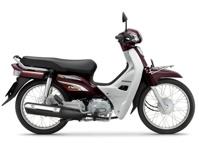 Xe máy Honda Super Dream 110 2013
