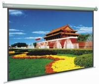 Màn chiếu treo Dalite - 84 x 84 inch (2.13 x 2.13 m)