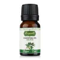 Tinh dầu tràm tinh khiết Lavende Cajeput Essential Oil 10ml