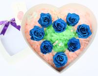 Tình Yêu Vĩnh Cửu – Hoa hồng Magic HQ17