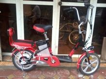 Xe đạp điện Geoby 1610 V4