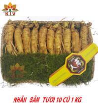 Nhân Sâm Tươi Hàn Quốc 10-12 củ/kg