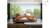 GIƯỜNG NGỦ sofa nhập khẩu malaysia GN044
