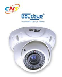 Camera Goldeye LWV18LV-IR