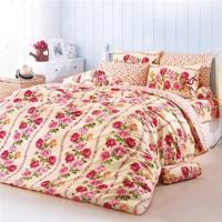Bộ drap cotton thương hiệu ToTo nhập khẩu Thái Lan TT359 1m6 x 2m
