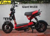 Xe đạp điện Giant M133i