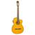 Đàn Guitar Takamine ED30C