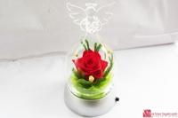 Hoa hồng bất tử - Hộp thiên thần phát sáng