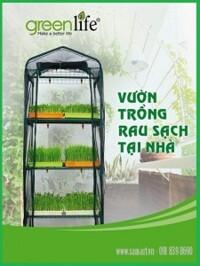 Giàn máy trồng rau mầm tại nhà Green life GLVR01